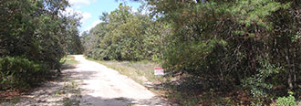Secluded one third of an acre parcel near Keystone Heights