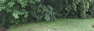 Charming Southern Lot in Vicksburg